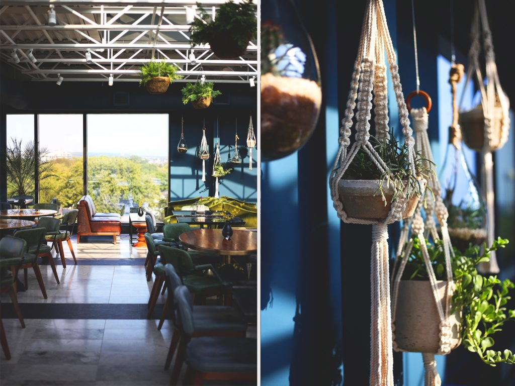 Decor of hanging succulents in the rooftop lounge at the Broadview Hotel.