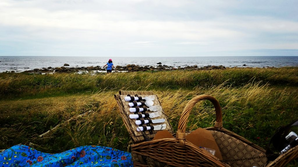A picnic scene on Gros Morne National Park's Coastal Trail