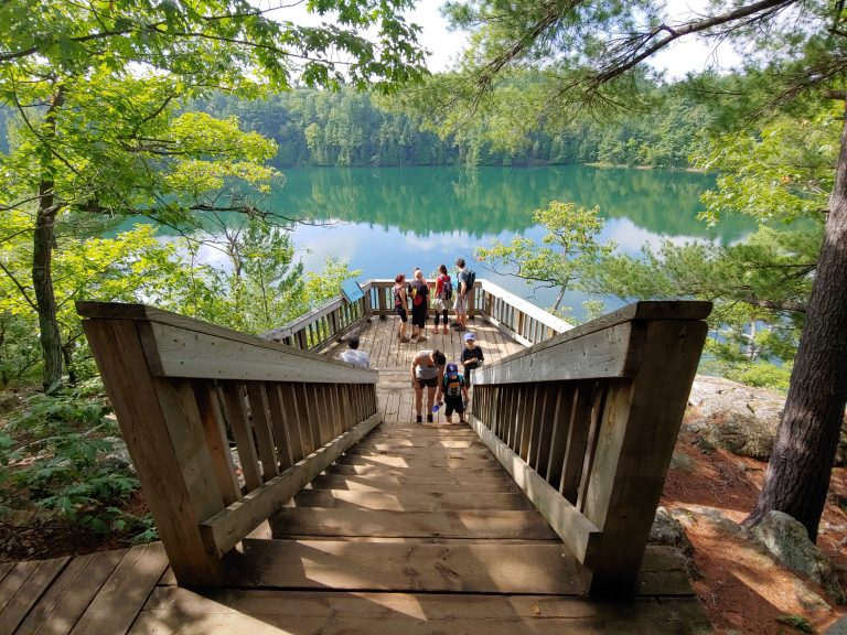 A busy morning scene at Pink Lake in Gatineau Park, Que., shot with the new LG G7 ThinQ.