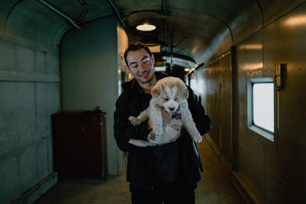 Via Rail, cargo car, puppy