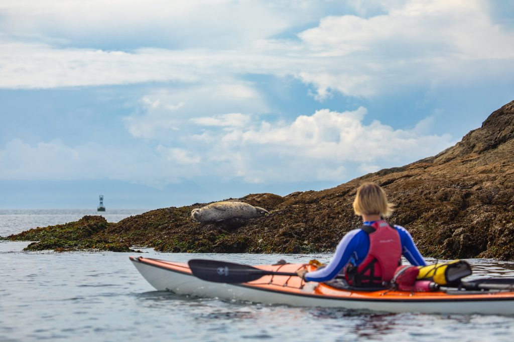 Victoria, wellness, kayak, seal