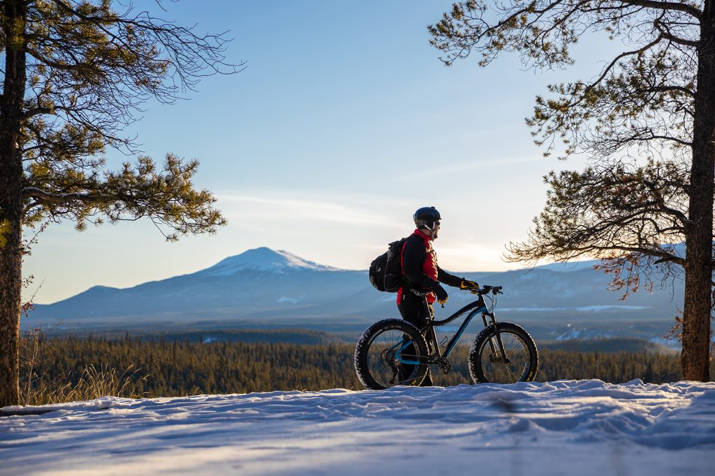 Man with fatbike standing between two pine trees, with a mountain in the background