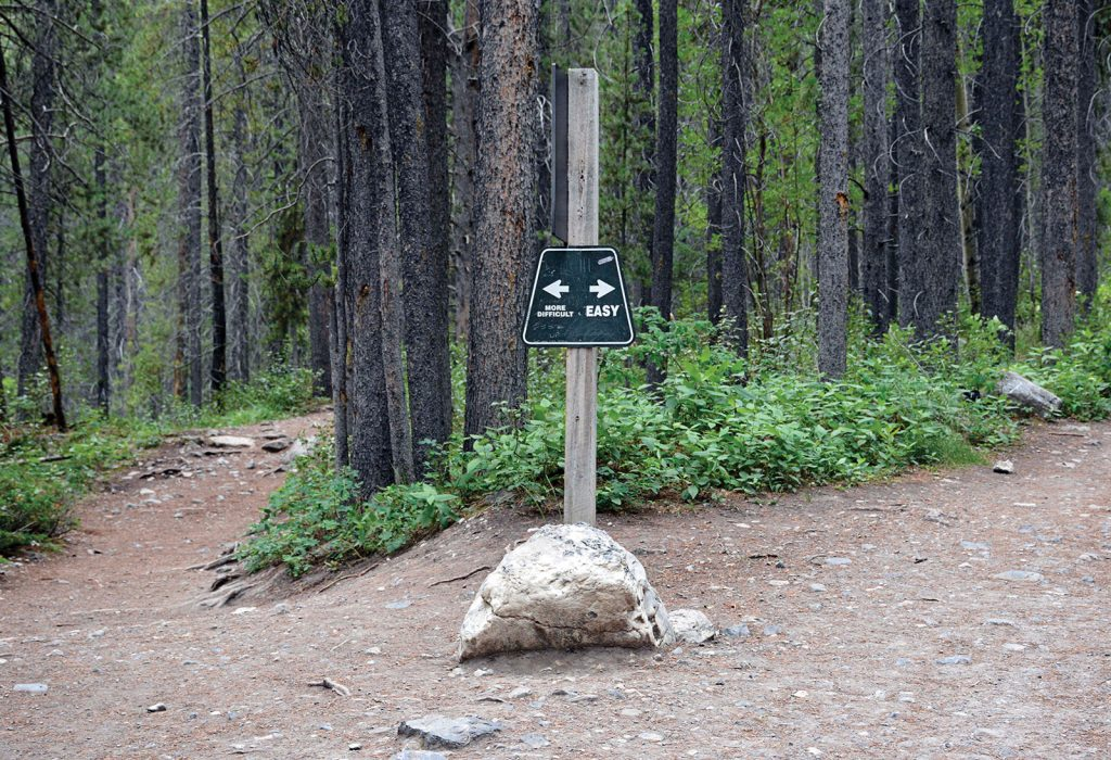 A sign on a post indicates different hiking trails in a wood