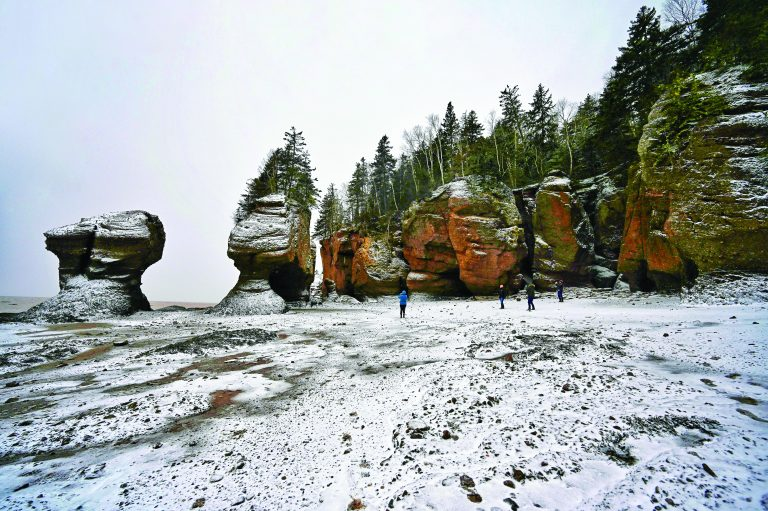 The floor of the Bay of Fundy is covered in a light snow