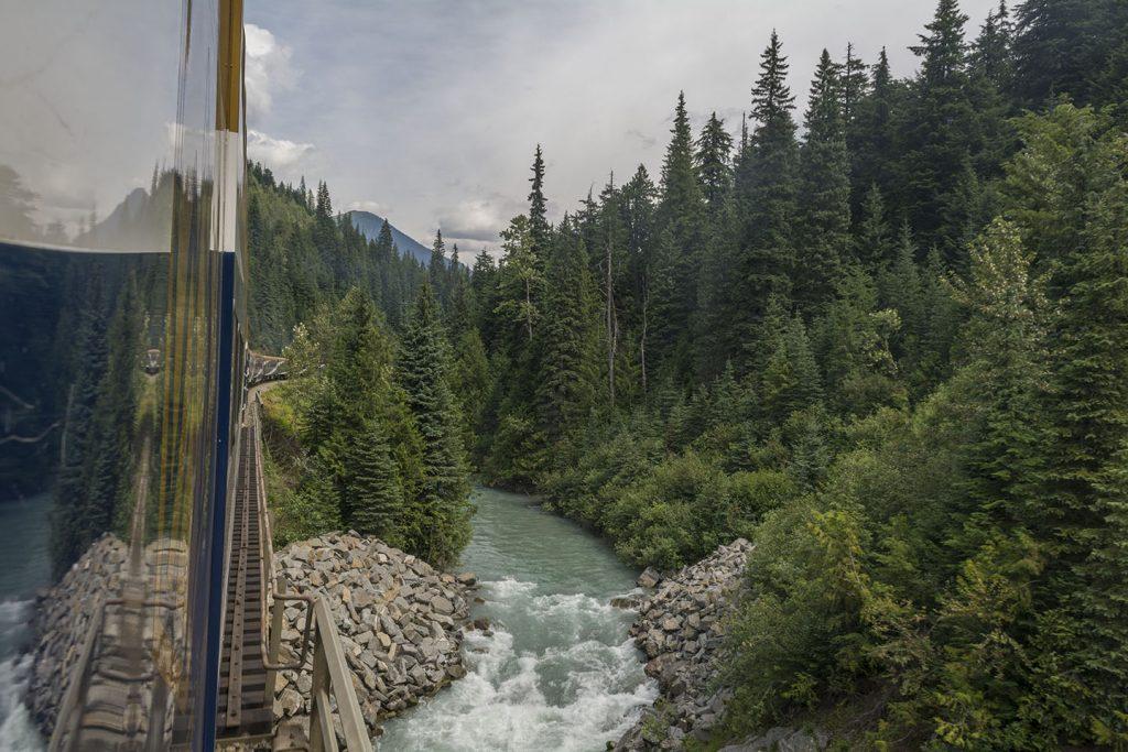 A river runs through a forest