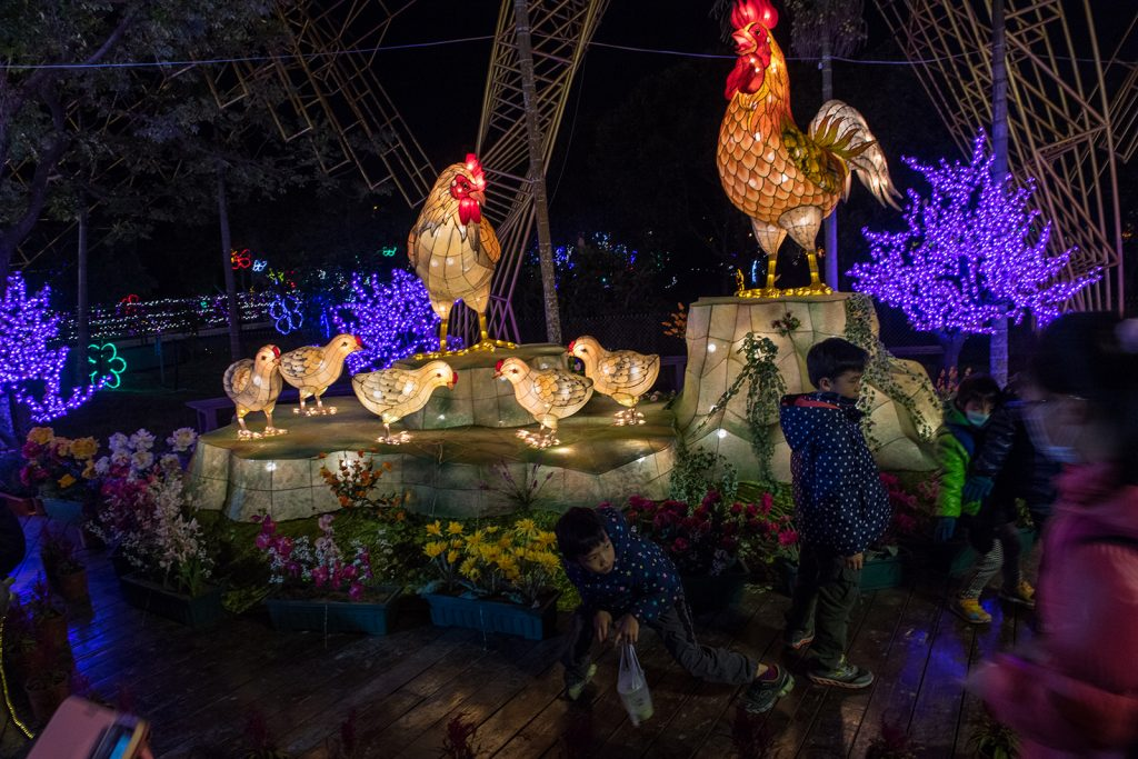 Children play in front of a brightly lit rooster lantern