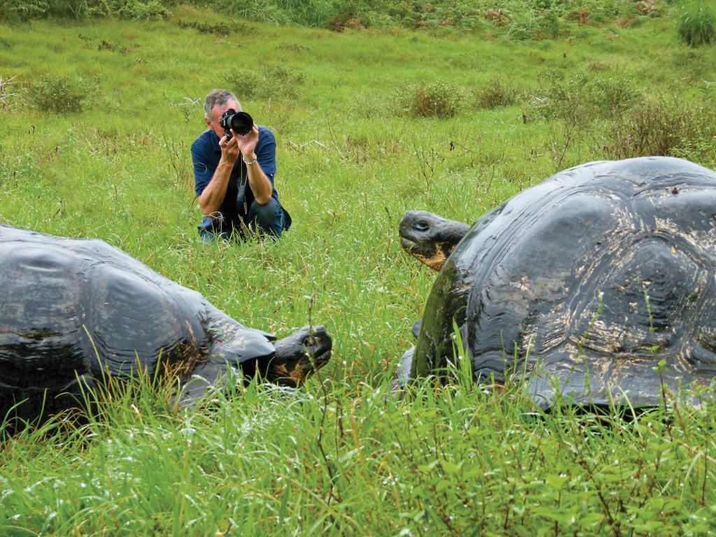 Photographer snaps giant tortoises in field