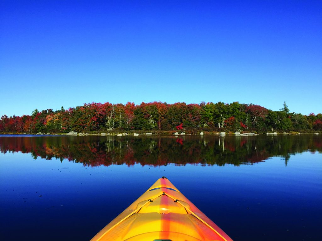 A canoers perspective of a lake, trees reflecting off the surface